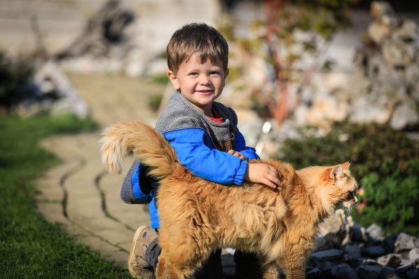 child_dog2_600